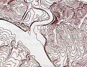 figure1c